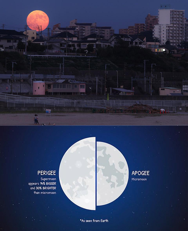 Largest Supermoon Full Moon