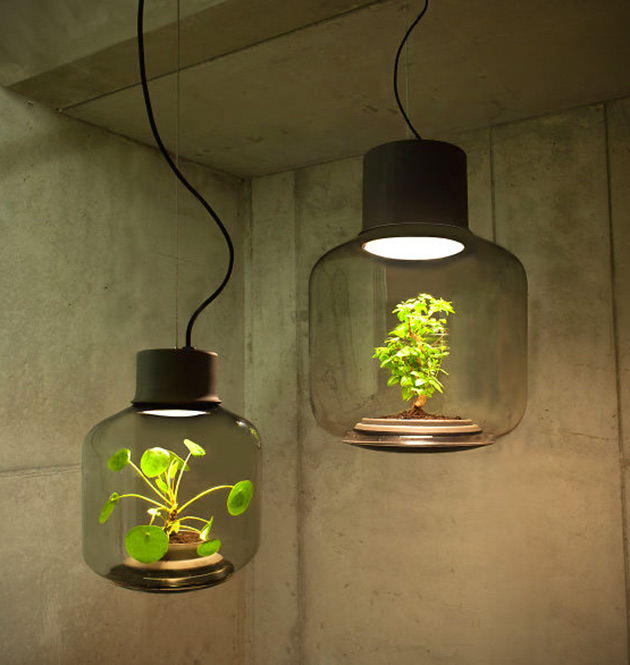 Mygdal plant light is an innovative led lamp that doubles as place to grow plants in windowless - Plant growing lamps ...
