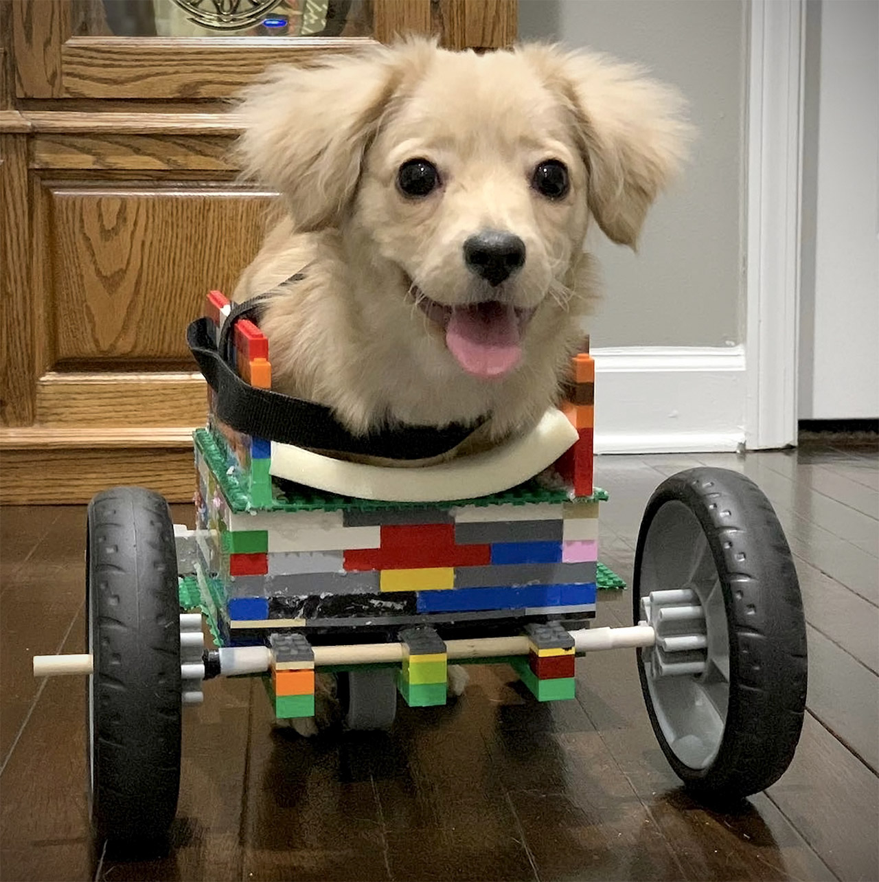 LEGO Wheelchair Dog