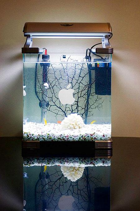 5 Weird and Cool Mac Aquariums - TechEBlog
