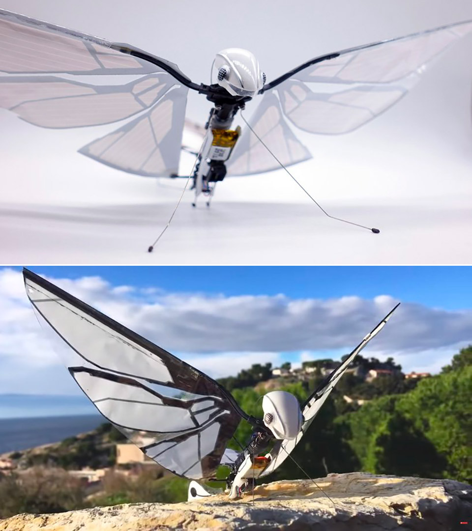 MetaFly Biomimetic Creature