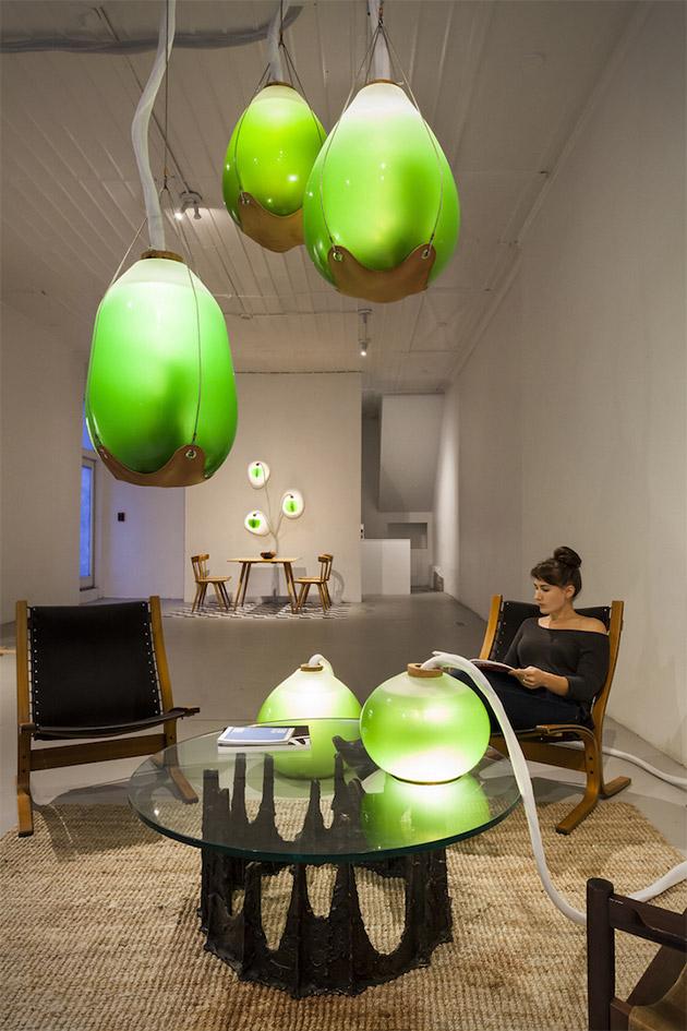Microalgae Lamp