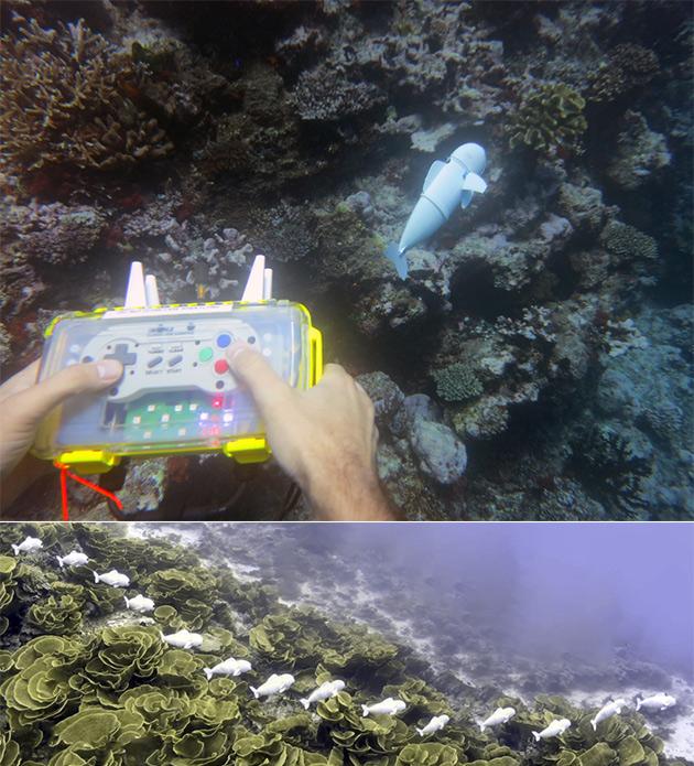 MIT SoFi Fish Robot