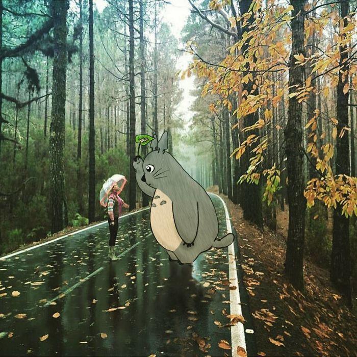 My Neighbor Totoro Photo