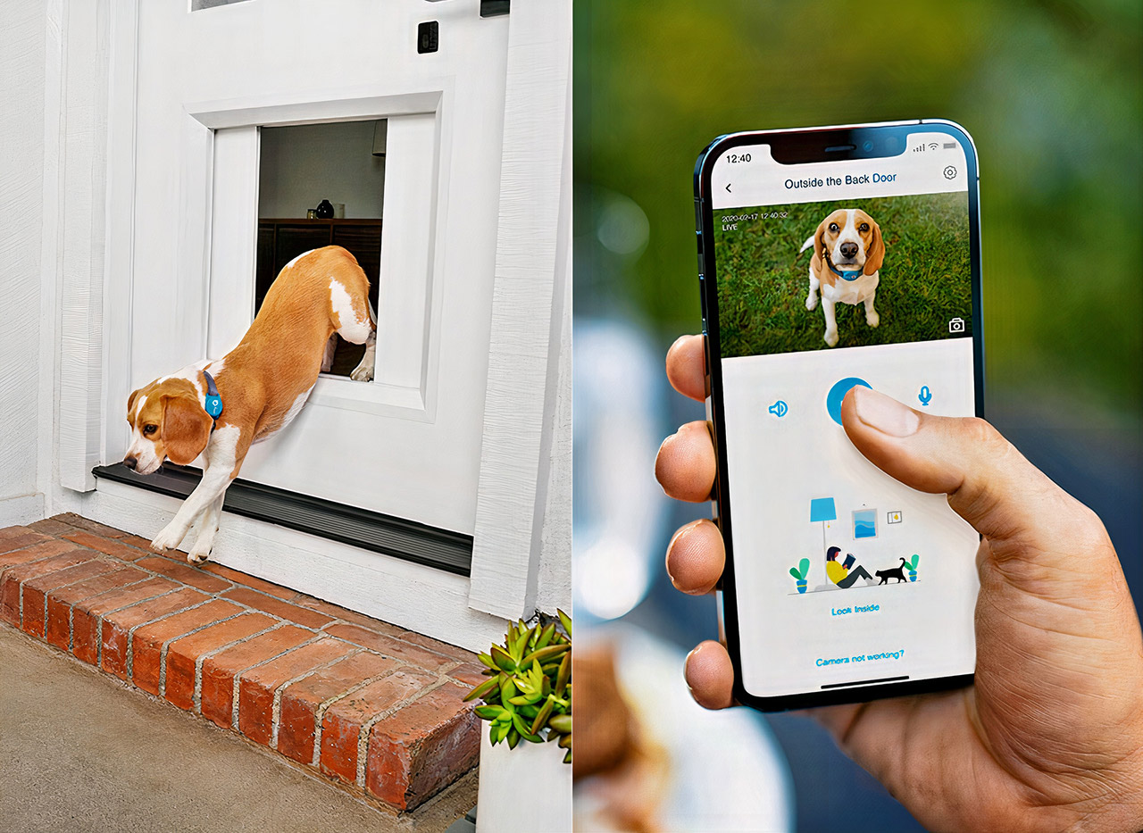 MyQ Pet Portal Smart Dog Door CES