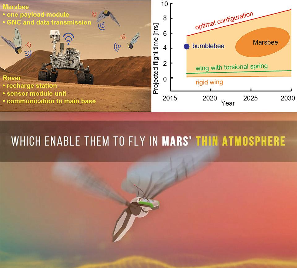 NASA Marsbee Robotic Bee