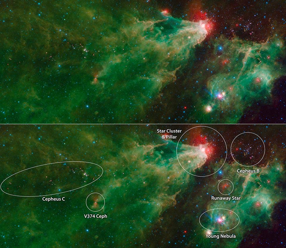 NASA Spitzer Space Telescope Stellar Family