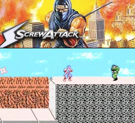 Ninja Gaiden Game