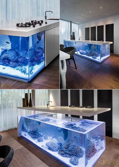 Ocean Kitchen Aquarium