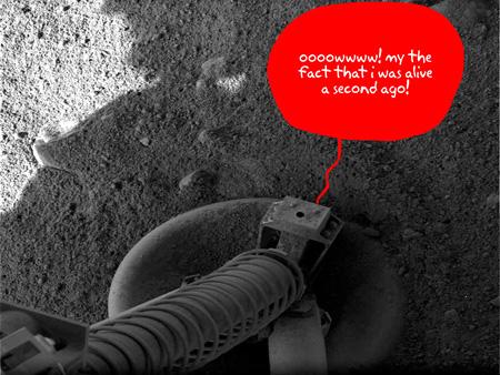 Phoenix Mars Lander Pictures