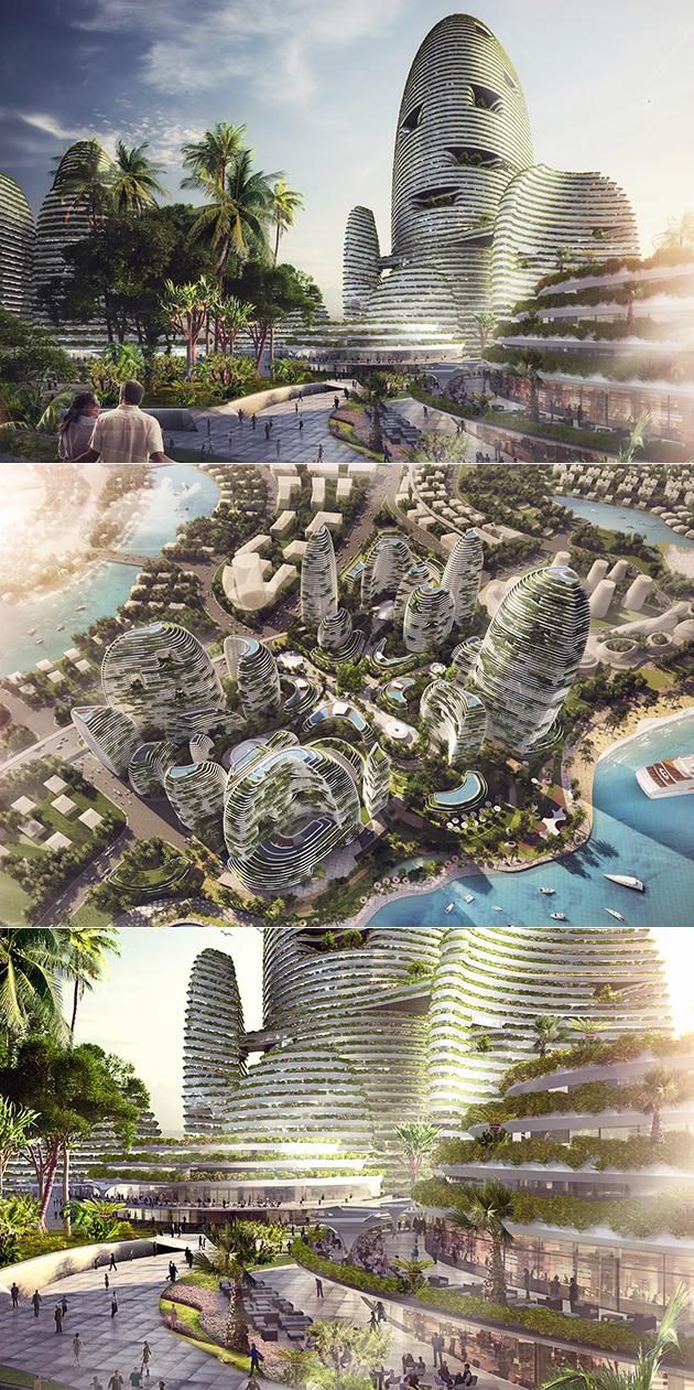 Rainforest City