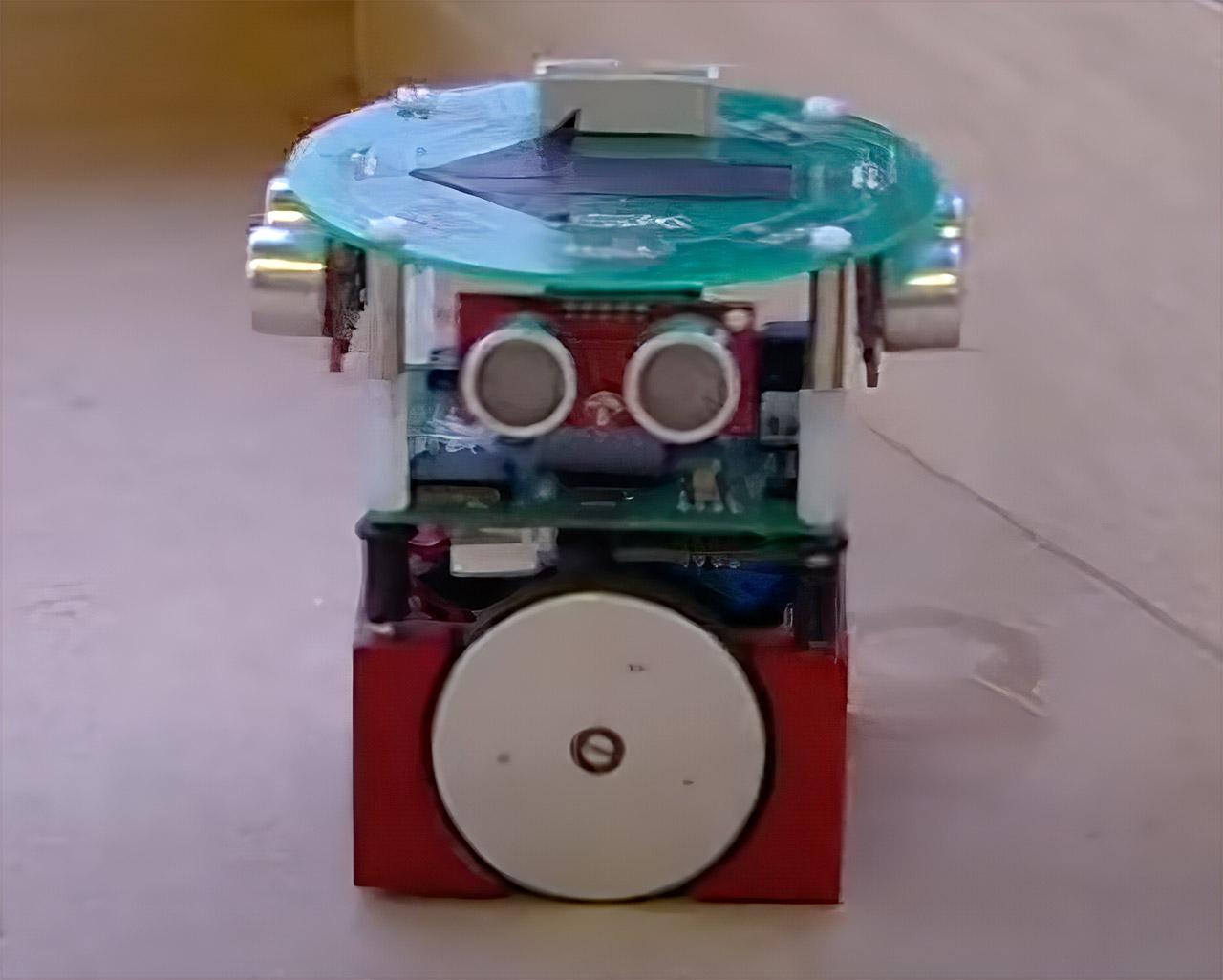 Rat Brain Controlled Robot
