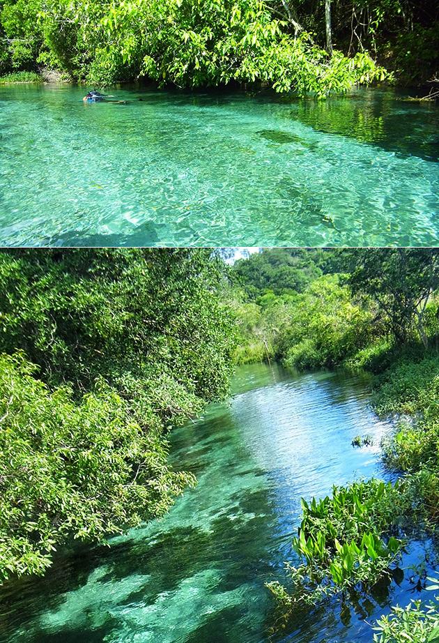 Rio de Prata Ecological Preserve Flooding