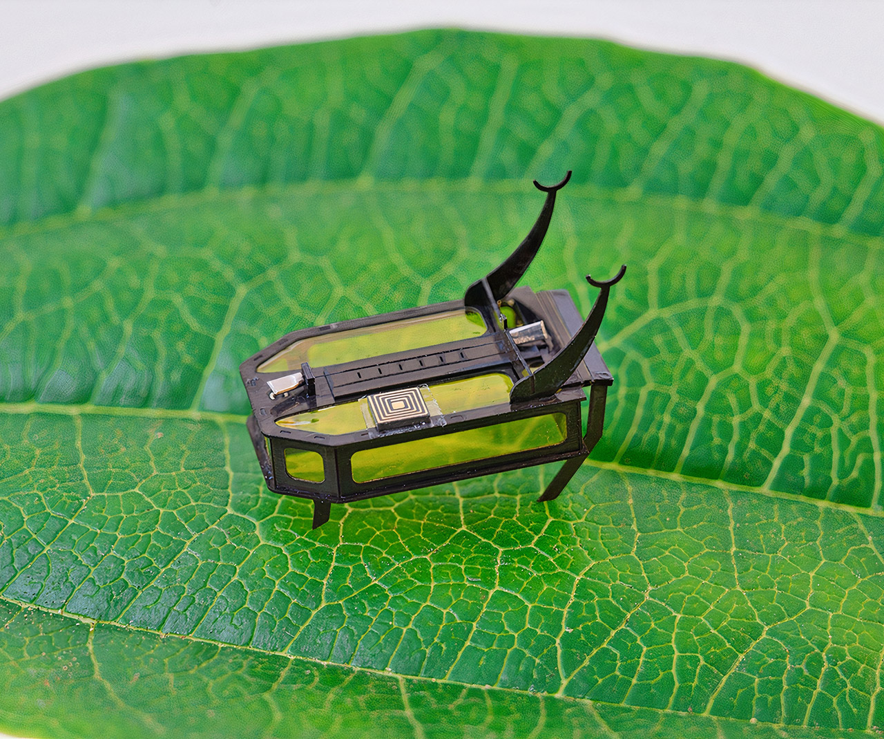 Robeetle Lightest Crawling Robot Guinness World Record