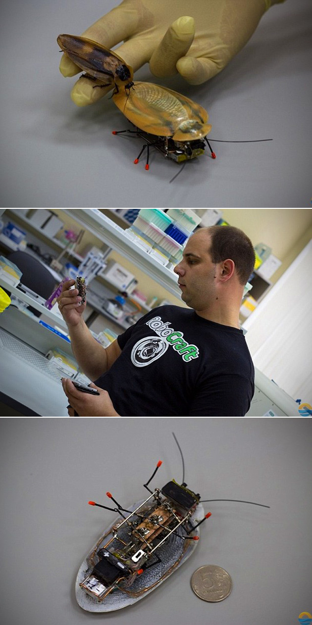 Robotic Cockroach
