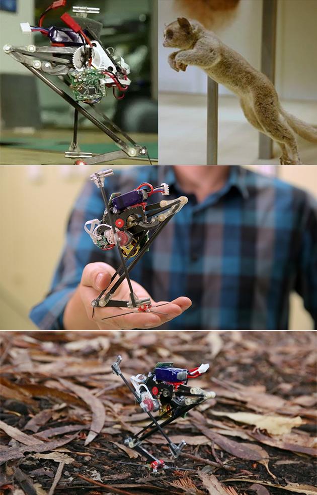 SALTO Springen von Wand zu Wand Roboter ist Perfekt für Parkour, Springen Kann 3-Füße in die Luft