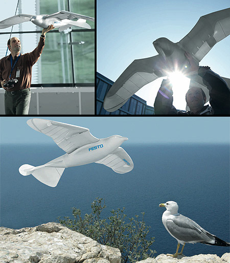 SmartBird: The Lifelike Robot That Flies Like a Real Bird – TechEBlog