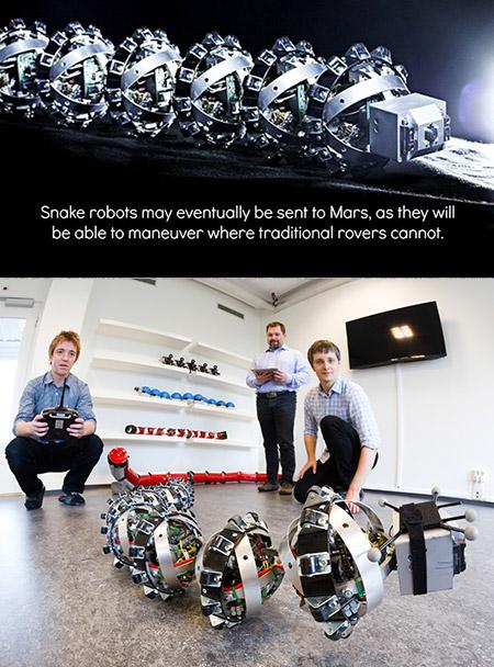 Snake Robot Mars