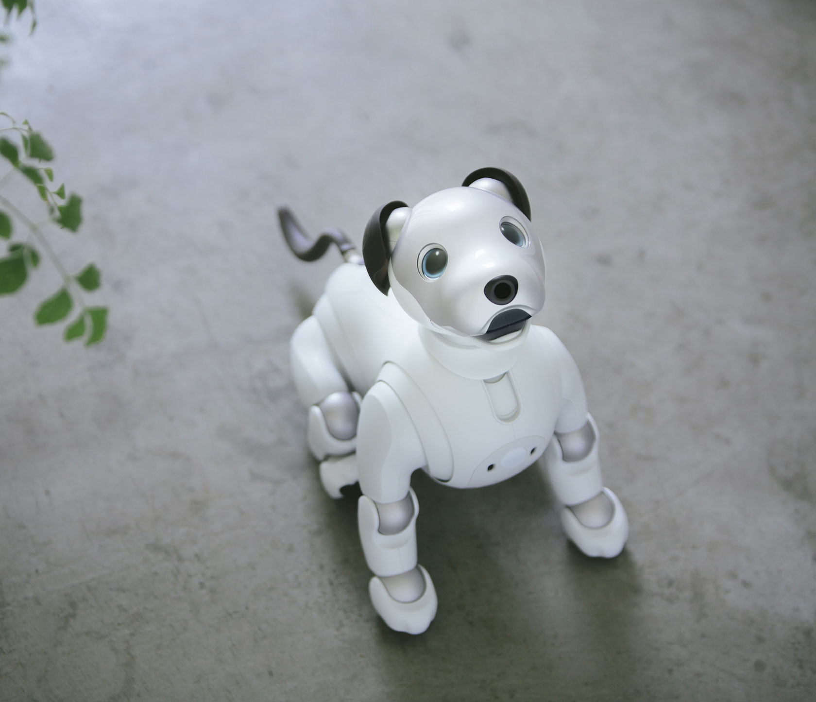 Sony AIBO Robot Dog New Tricks