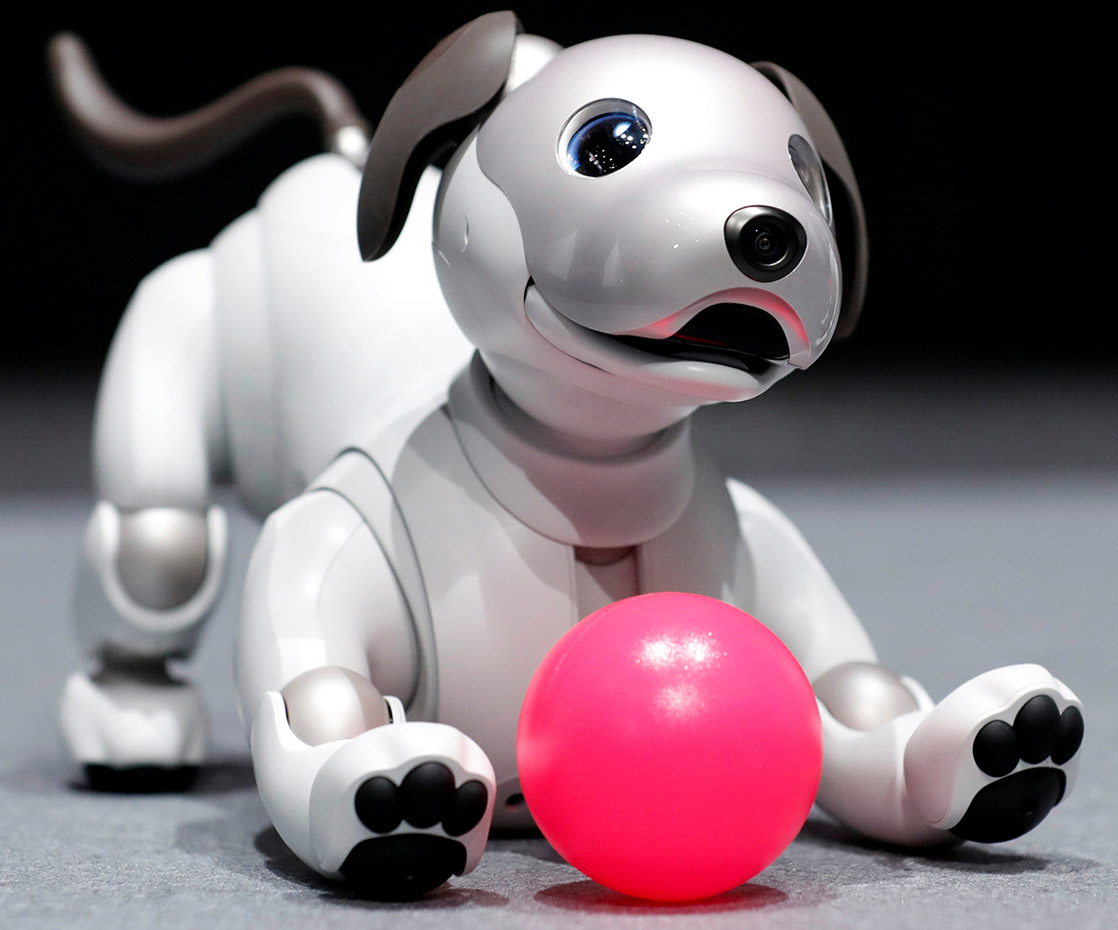 Sony Aibo Robot Dog Update