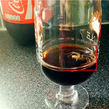 Coke Spider