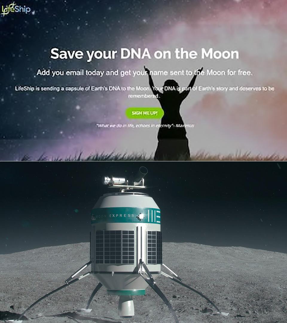 Startup Lifeship DNA Moon