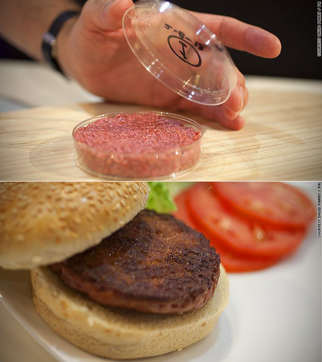 Stem Cell Burger