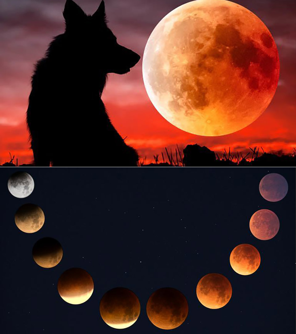 Super Blood Wolf Moon Eclipse Supermoon