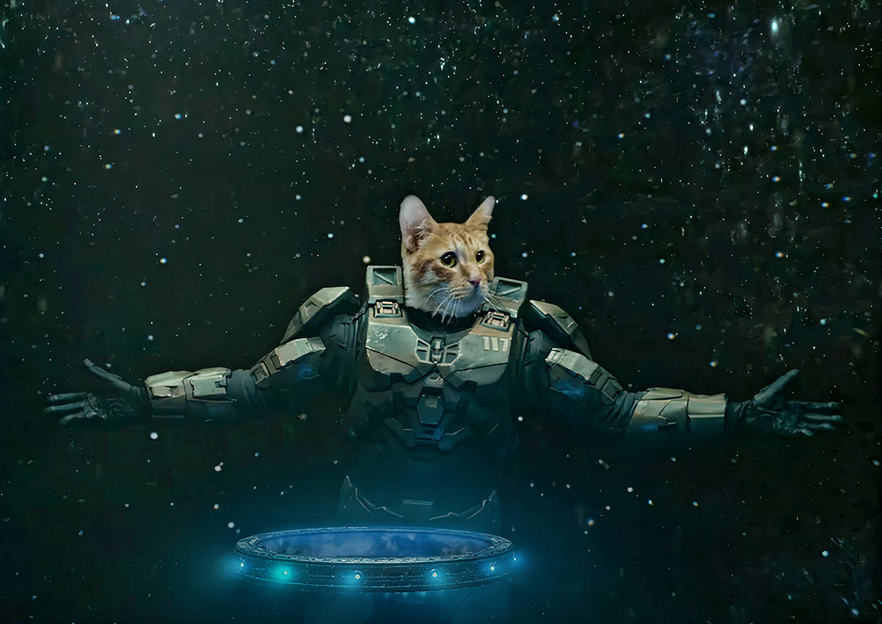 Taika Waititi Xbox Series X Master Chief Cat