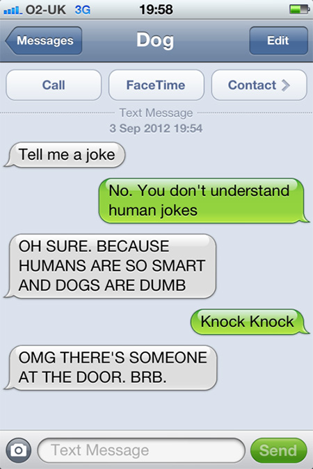 15 Funny and Weird Text Messages from Dog - TechEBlog