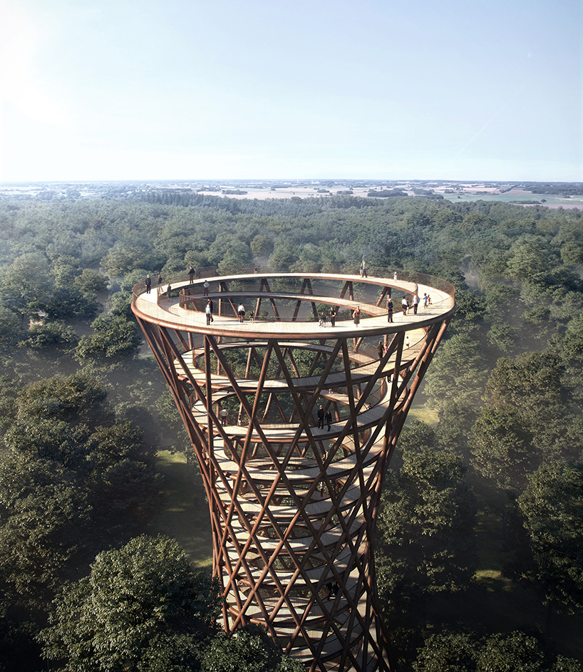 The Treetop Experience