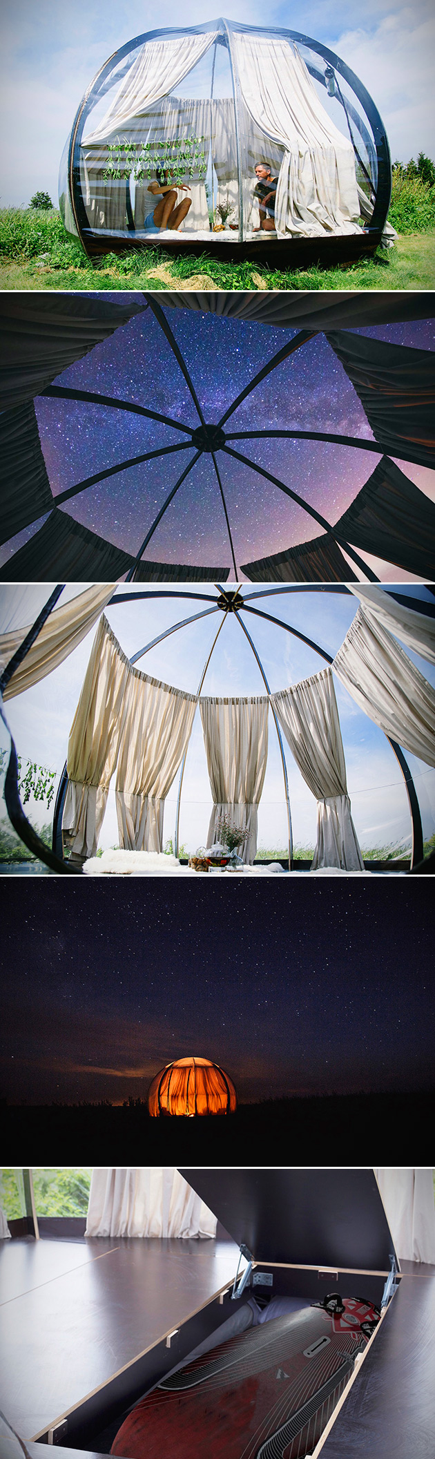 Transparent Dome Oasis