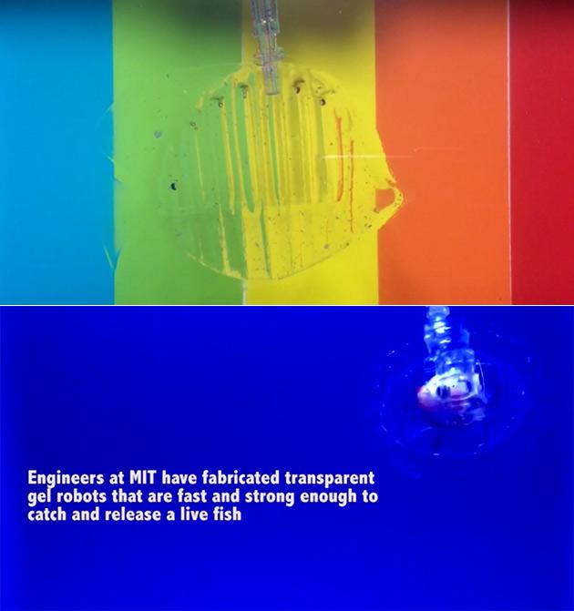 MIT Transparent Gel Robot