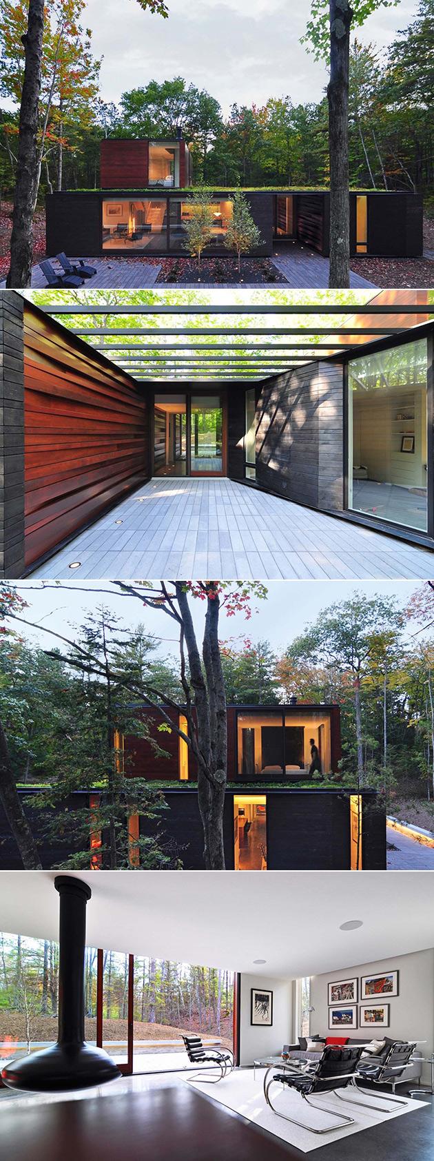 Tree Bark House
