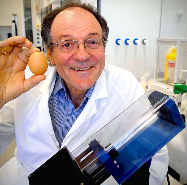 Unboil Egg
