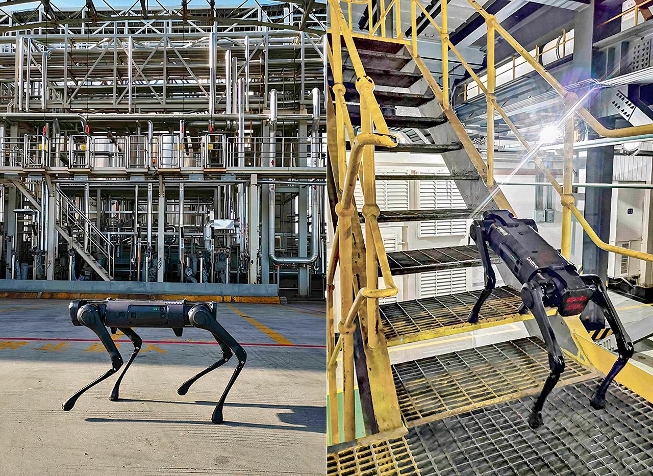 Unitree Robotics Go1 Robot Dog