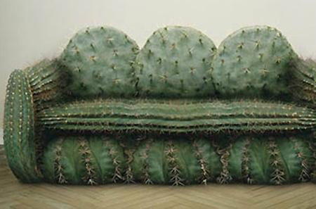 Los sillones mas raros del mundo taringa - Cactus raros fotos ...