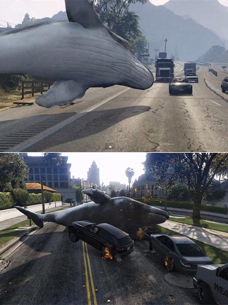 Whale GTA V