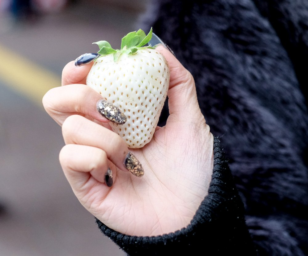 White Jewel Strawberries