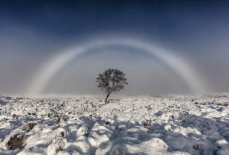 White Rainbow Fogbow